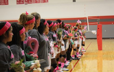 Volleyball hosts Dig for the Cure; falls to Wagner