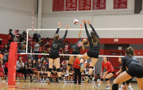 Volleyball falls to Steele