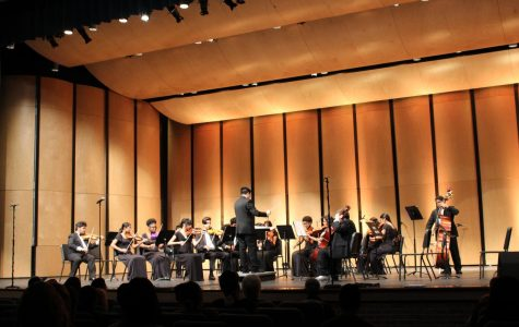 Orchestra puts on first concert of the year