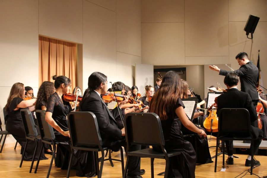 Orchestra performs their first concert of the year