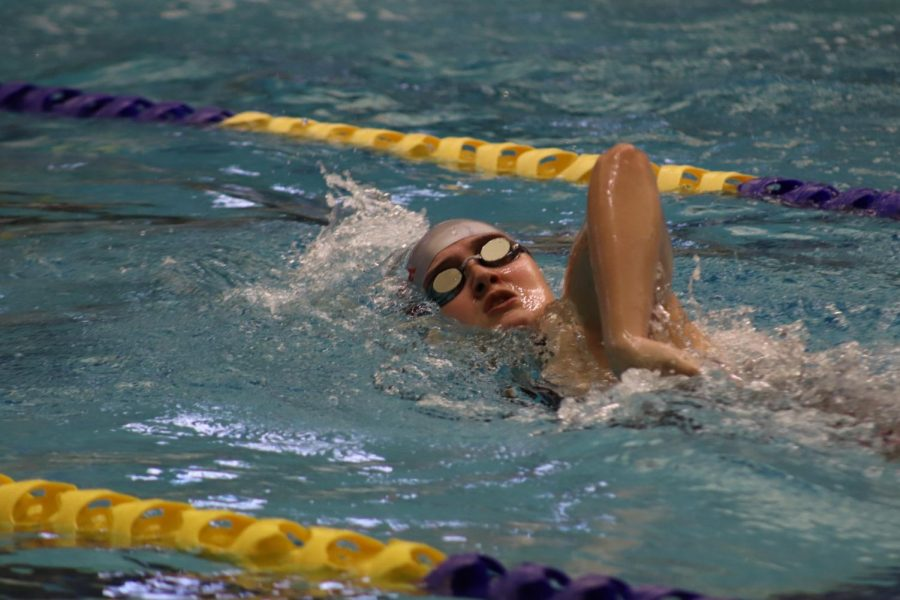 Swim continues to grow, qualifies for regionals