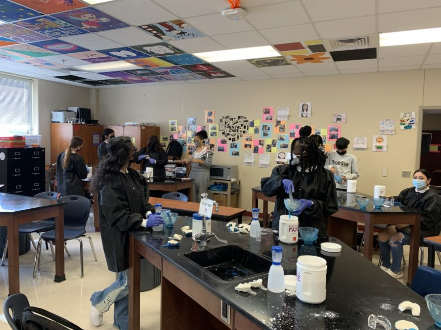 The dental internship students create Alginate impressions in the dental lab. Being a part of a health science cluster, it is vital for students to understand health standards inside and outside of the classroom.